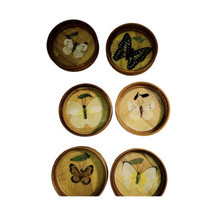 Vintage Preserved Butterfly Glass Bamboo Coasters Set of 6 Bar Ware Natu... - $16.82