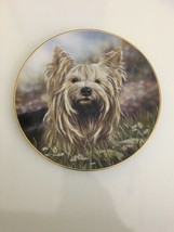 Gorgeous Danbury Mint Daisy by Paul Doyle Yorkshire Terriers Platea - $11.87