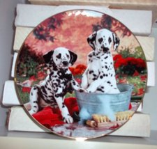 "Decorative Plate- ""You Missed a Spot"" - $21.78"