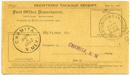 Railway Post Office - Antonito & Santa Fe RPO Cancel on Registered June ... - $22.49