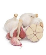 Organically Grown Music Garlic Bulbs Culinary/Table Garlic (1/2 Lb) - $9.90
