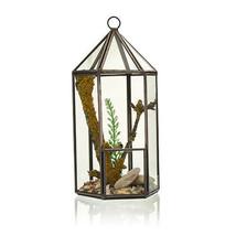 Glass Terrarium -Lantern Shape - $25.90