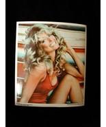Farrah Fawcett 8x10 Decal 1976 Pro Arts - $15.99