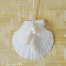 Beach Seashell Ornament Scallop Shell Wall Decor Christmas Tropical Beac... - $8.99