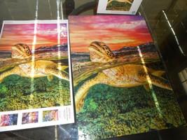 Sea Turtle Tortoise Tropical 500 Pc Jigsaw Puzzle Buffalo Games Earthpix  - $10.68