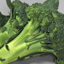 Broccoli Vegetable Seeds 100 Fresh Seed Ready To Plant In Your Garden - $1.99