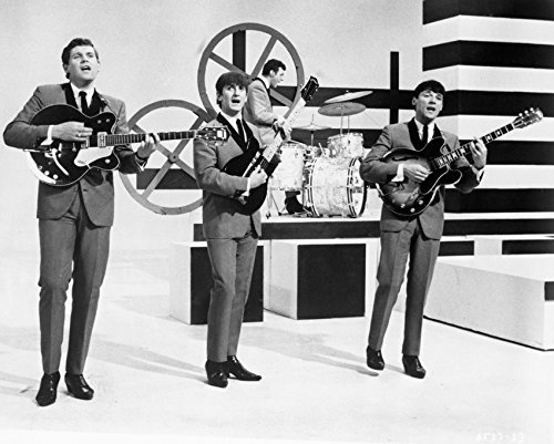 The Animals 16X20 Canvas Giclee Cult Pop Group In Concert 1960'S