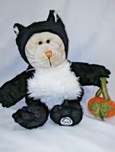 "2005 Starbucks Plush 10"" 41st Ed Halloween Black Kitty Cat Bearista Bear Pumpkin - $11.65"
