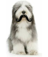 HUMUNGA STACHE RUBBER PET DOG TOY FETCH BALL S, M, L Size NEW! - $10.62+