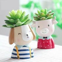 Succulent Plants Mini Bonsai Cactus Flower Pot Home Garden Decor - $13.49