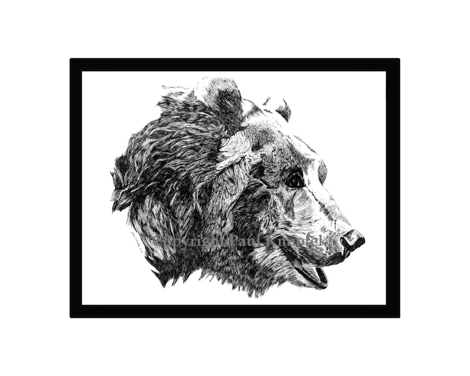 Primary image for Grizzly Old Bear Pen and Ink Print, Animal