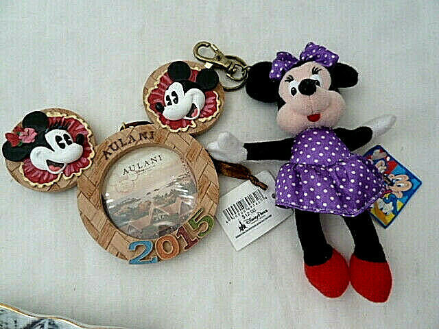 Primary image for DISNEY Minnie Mickey MOUSE AULANI HAWAII PICTURE FRAME ORNAMENT+ Key Ring plush