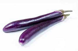 Eggplant Long Purple Italian Non GMO Heirloom Vegetable 25 Seeds - $1.77