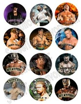 Hallm Wrestling WWE Party Favors Pins Buttons Treats Supplies Decoration... - $10.84