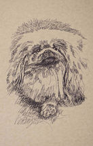 Pekingese Dog Art Print #30 Kline draws your dogs name free. PEKE WORD D... - $49.95