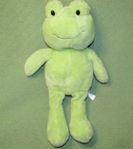"18"" SWEET SPROUTS Green FROG Plush Stuffed Animal 2014 Animal Adventure Target - $28.04"