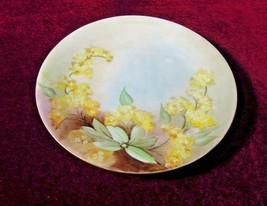 La Seynie Charger Limoges  Antique France P & P  Floral - $29.70