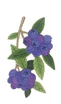 Nature Weaved in Threads, Amazing Fruits[Blueberry ] [Custom and Unique] Embroid - $12.87