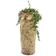 "GeLive 9"" Tall Owl Ceramic Succulent Planter, Fun Animal Plant Pot, Home... - $352,87 MXN"