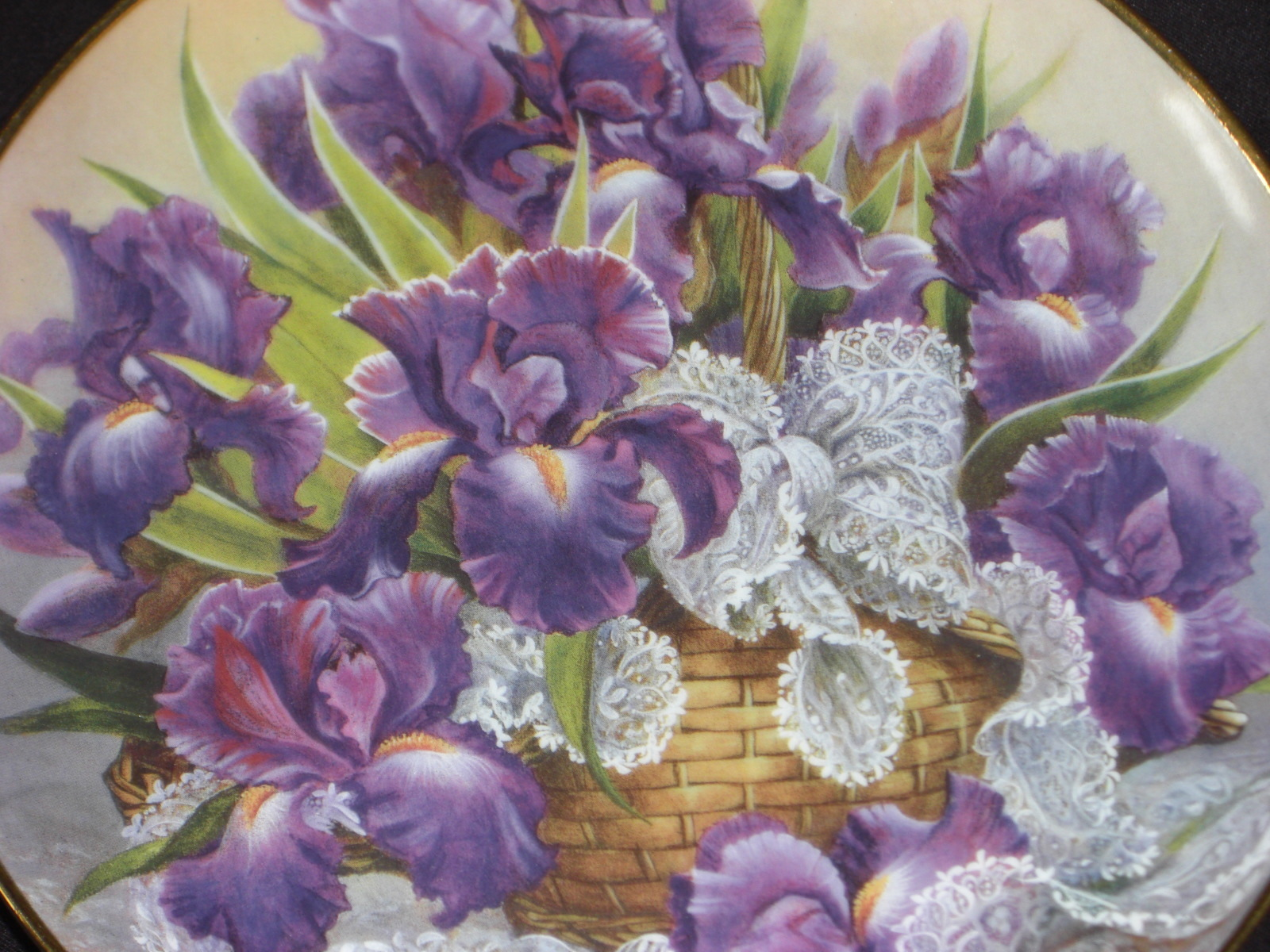 Iris plate 2