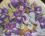 Iris plate 2 thumb155 crop