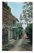 St Augustine Florida Aviles Street Horse Drawn Carriage Vintage FL Postcard - $2.99
