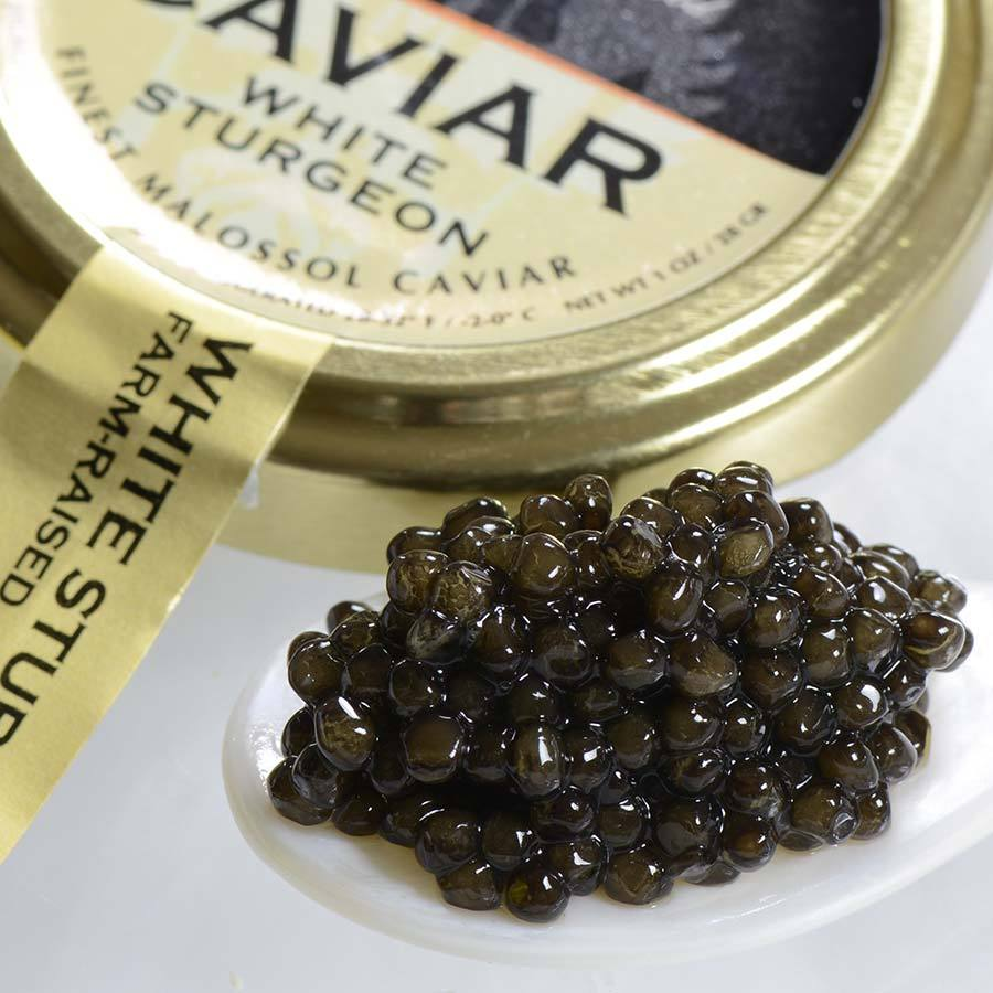 Primary image for Italian White Sturgeon Caviar - Malossol, Farm Raised - 8 oz tin