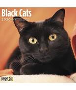 Cat Wall Calendars by Bright Day Calendars 16 Month Wall Calendars 12 x ... - $10.82