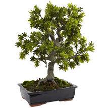 Giant Podocarpus w/Mossed Bonsai Planter, Nearly Natural - $263.60