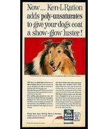 COLLIE Dog AD for Ken-L Ration Dog Food AD 1963 - $14.99