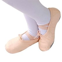 Dance Class Ballet Shoes/Canvas Dance Shoes For Pretty Girl (18.5CM Length)
