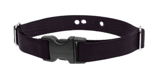 "LupinePet Basics 1"" Black 16-24"" Containment Collar Strap for Medium and Larger"