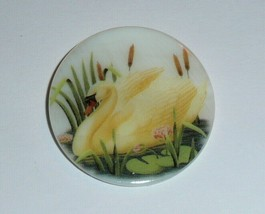 """Pretty Yellow Swan MOP - Mother Pearl Shank Button 1-3/8"""" Cattails Swan ... - $11.39"""