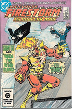 The Fury Of Firestorm Comic Book #29 Dc Comics 1984 Very Fine New Unread - $3.50