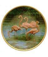 Bradford Exchange W S George The Flamingo The Elegant Birds James Faulkn... - $38.21