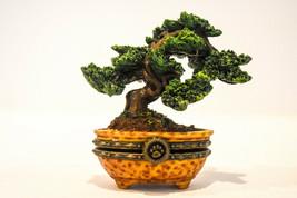 Boyds Bears  Ms Wangs Bonsai Tree  Treasure Box 392170  Classic Figure - $18.60