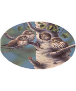 Northern Pygmy Owls Bird Plate | Vintage Gift For Bird Lovers  - $14.99