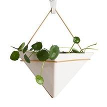 "AsureQ 8"" Ceramic Geometric Hanging Planter Succulent Flower Pot Air Pla... - $287,25 MXN"