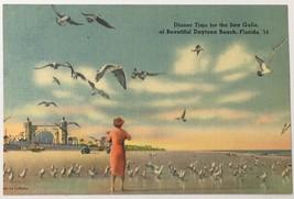 Old Linen Era Postcard Dinner Time for Sea Gulls Beautiful Daytona Beach... - $11.75