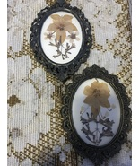 Vintage Dried Flowers Brass Frame Wall Hanging Made in Italy Small Wall ... - $12.00
