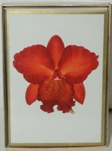 Caspari 80631 46 ORCHIDS Assorted Boxed Notes and Envelopes Package 6 3 Designs image 2