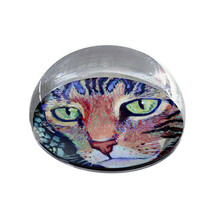 """Multicolor Cat Painting Art Gift 2"""" Crystal Dome Magnet or Paperweight - $15.99"""