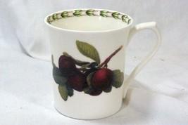 Queens Rose Hooker Fruit Plum Mug - $6.23