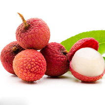 10pcs Lychee Litchi Fruit Seeds Delicious Sweet Seasonal Perennials Plan... - $13.58