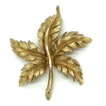 Brooch Pin Goldttone Chestnut Tree Leaf Curved Stem 3 by 2.5 In Vintage - $11.88