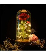 Birthday Gift Beauty and the Beast Red Rose Fallen Petals in Glass Led D... - $43.74