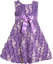 Bonnie Jean Little Girl 2T-6X Purple Gold Bonaz Rosette Fit Flare Social Dress