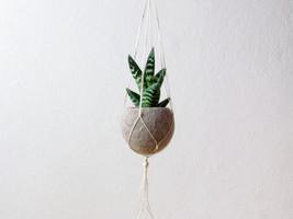 Hanging planter / Macrame plant hanger / Beige Felt planter / air plant ... - $24.00