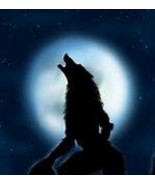 Haunted werewolf Lycan Awakening Transformation WEREWOLF spell  power senses - $79.99