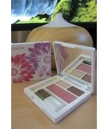 Clinique Colour Surge Eyeshadow Duo Blushing Powder Blush Bronzer choose... - $11.87+